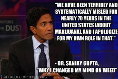 Dr Sanja Gupta